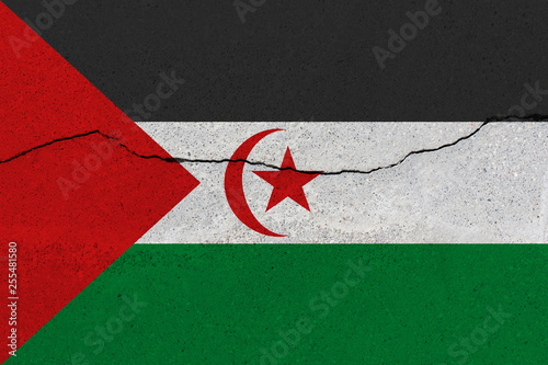 Photo sur Aluminium F1 Sahrawi Arab Democratic Republic flag on concrete wall with crack