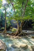 Big Rocks Under Water In The Foreground With Sunlight Through Trees Make The Clear Water Of Erawan National Park In Thailand Glow And Highlight The Tree Roots