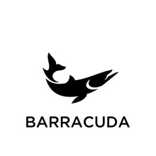 BARRACUDA Logo Icon Designs Ve...