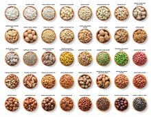 Collection Nuts And Seeds Isol...