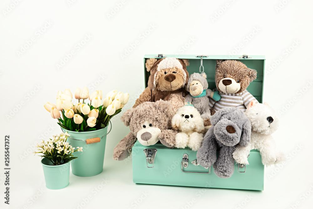 Fototapeta Muñecos de peluche en maleta y tulipanes.