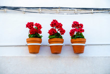Three Vibrant Red Geranium Flowers In Flowerpots Hang In Line From A White House Wall