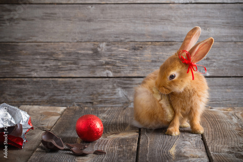 Stickers pour porte Pierre, Sable rabbit with chocolate eggs on wooden background