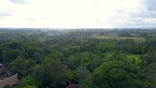 Natural Park On Bali Indonesia Island Aerial Dolly In