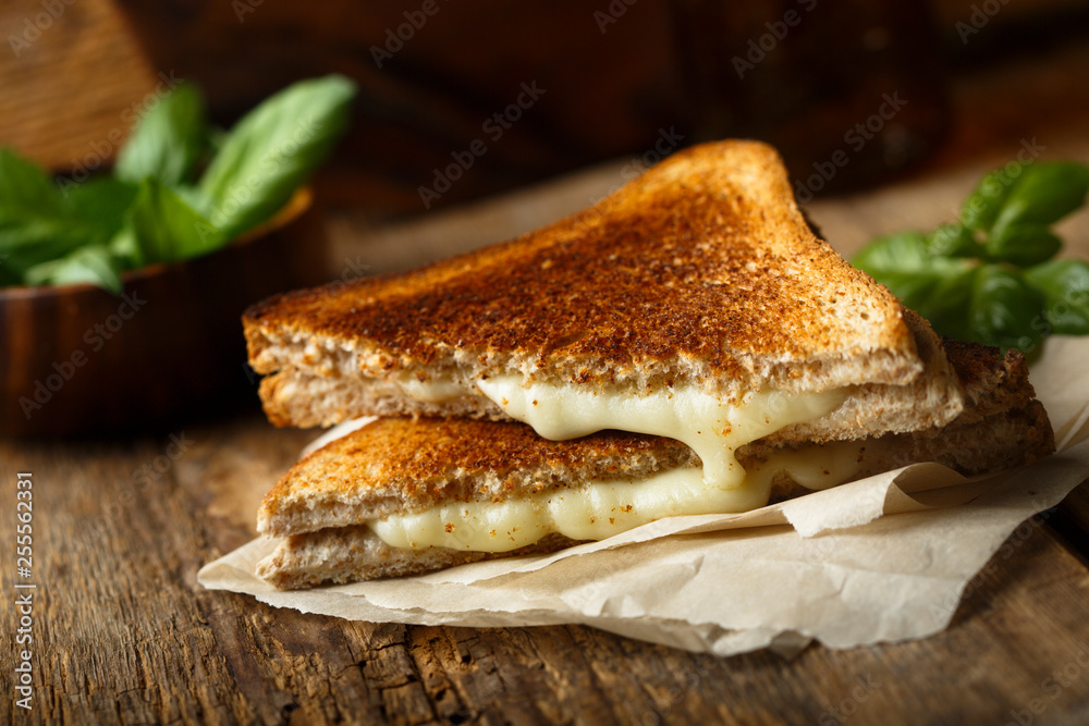 Obraz Grilled cheese sandwich fototapeta, plakat