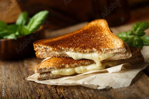 Fototapeta Grilled cheese sandwich obraz