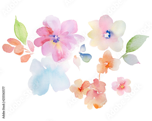 Tuinposter Flowers watercolor illustration