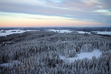 Amazing Panoramic Landscape Of Winter Pine Forest From Top Of Puijo Tower, Kuopio, Finland