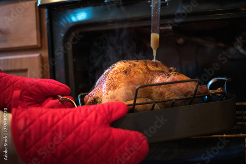 Turkey being basted in a large pan being pulled out of the oven with red oven mi Wallpaper Mural