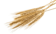 Ears Of Rye Isolated On A Whit...