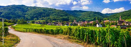 Leinwand Poster Alsace region of France - famous Vine route