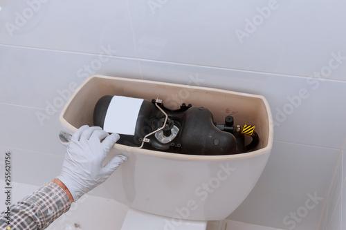 Fotografie, Tablou  Plumber repairing toilet tank in bathroom plumbing at home changes the toilet