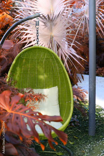 Fotografía  Rattan oval hanging chair witht pillow in tropical plant.