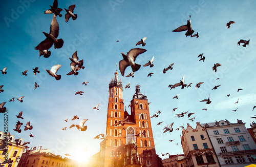 In de dag Krakau St. Mary's basilica in main square of Krakow with flying pigeons