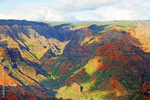 Recess Fitting Deep brown Waimea Canyon - Kauai, Hawaii