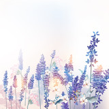 Fototapeta Lavender - Floral vector spring illustration with field flowers lavender, morning light