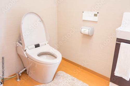 一般住宅のトイレ Canvas Print