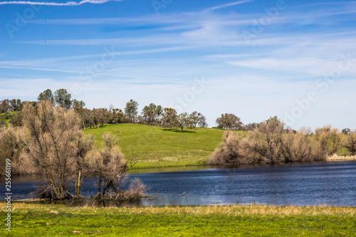 Fotografie, Obraz  Small Pond In California Foothills