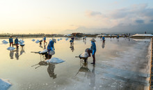 People Working On Salt Field A...