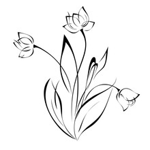 Three Flower Buds On Stems Wit...
