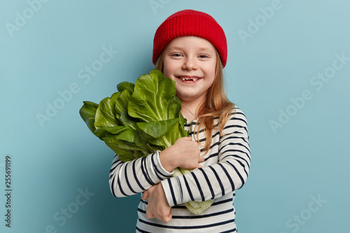 Fototapeta Children and healthy eating concept. Happy female child holds bok choy, returns from vegetable garden, being vegeterian, wears red hat and striped jumper, has good mood, wants to make salad. obraz