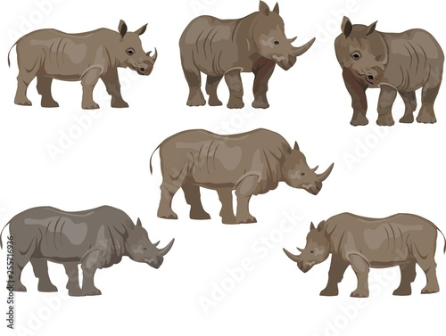 Set of rhinoceros animals, isoalted on white Canvas-taulu