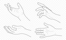 Handdrown Vector Outline And Contour Illustration Of Hands With Fingers In Different Gestures With Open Palms