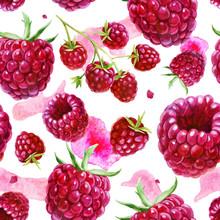 Watercolor Illustration, Pattern. Berries On White Background. Raspberries, Raspberries On A Twig, Pink Spots.