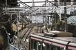 東急東横線の列車(大倉山)