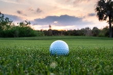 Golf Ball On Florida Course During Sunset