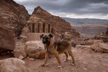The Monastery - Ad-Deir Temple...