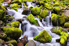 Small Cascade Over Mossy Rocks, Sol Duc Falls, Olympic National Park, Washington, USA