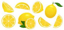 Lemon Slices. Fresh Citrus, Ha...