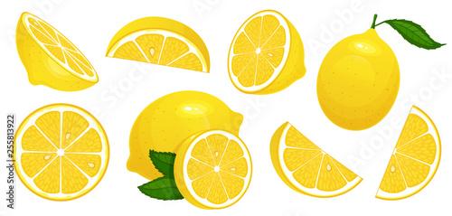 Fotografie, Obraz Lemon slices