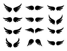 Wings Logo Set. Vector