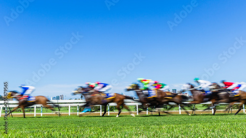 Foto op Canvas Paarden Horse Raceing Speed Motion Blur