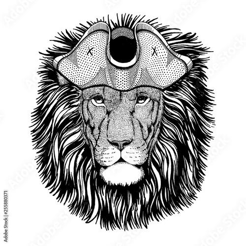Photo sur Toile Croquis dessinés à la main des animaux Lion wearing pirate tricorn hat. Capitan costume.