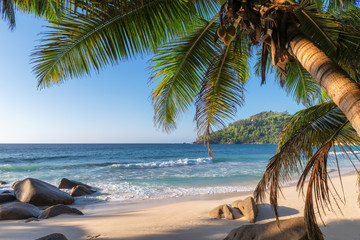 Fototapeta Morze Exotic tropical beach with palms and blue sea at sunset on Seychelles Paradise island.