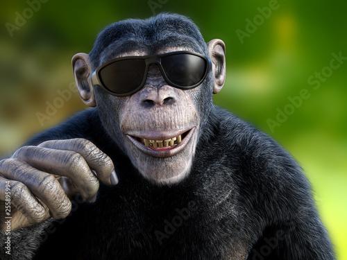 Fotografia 3D rendering of a chimpanzee wearing sunglasses.