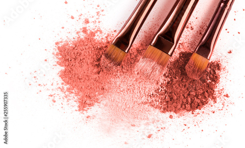 Valokuva  Smears of crushed pink blusher with brushes