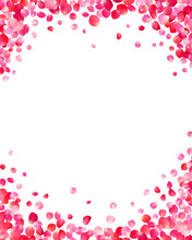 White Background With Pink Rose Petals