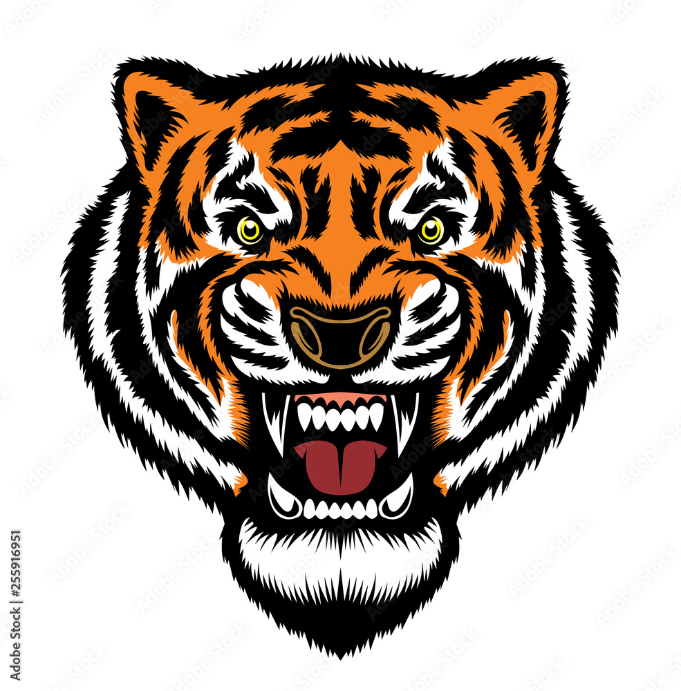 Głowa Ryczącego Tygrysa Drapieżny Uśmiech 255916951