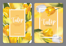 Blooming Beautiful Yellow Tulip Flowers Background Template. Vector Set Of Blooming Floral For Wedding Invitations, Greeting Card, Voucher, Brochures And Banners Design.