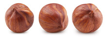 Hazelnut Isolated Clipping Path