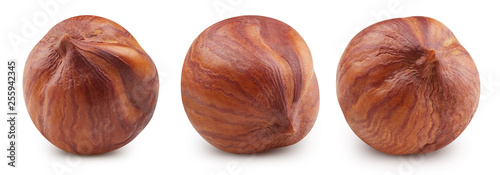 Foto auf Leinwand Frischgemüse Hazelnut isolated Clipping Path