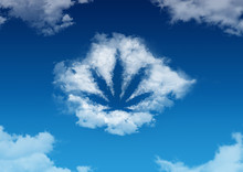 Cannabis In The Form Of A Cloud In The Blue Sky