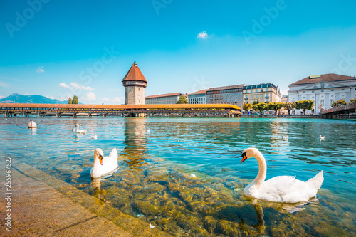 Fotomural Historic town of Lucerne with famous Chapel Bridge, Switzerland