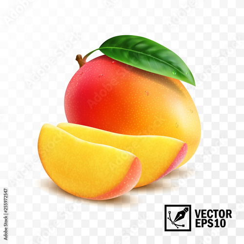 Fotomural Whole and slice mango fruit with leaf, 3D realistic isolated vector, editable ha