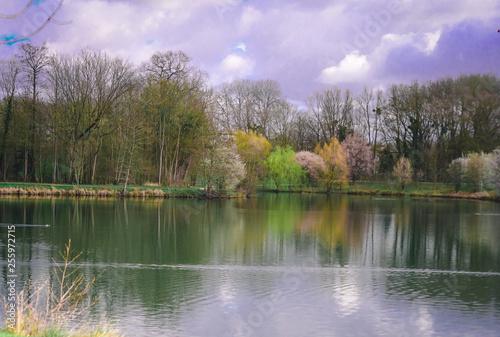 Papiers peints Lilas Bords du lac