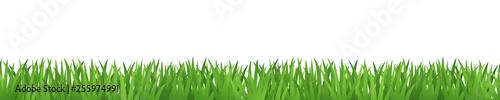 Fototapeta Gras Banner Hintergrund wiederholend obraz